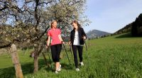 Nordic Walking in den Kitzbüheler Alpen